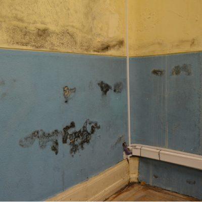 O elevado estado de deterioração sente-se nos corredores, no teto, nas escadas de acessos, nas salas de aulas e até mesmo nas paredes, sem pintura