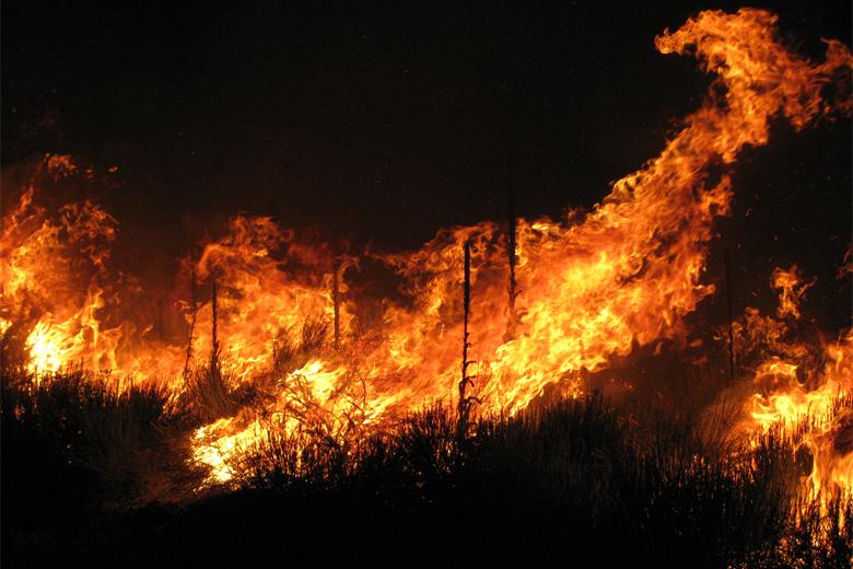 Fase crítica dos incêndios decorre entre 1 de julho e 30 de setembro