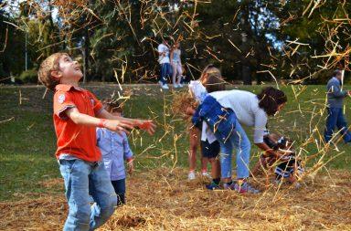 A Festa do Outono tem regresso prometido para 2017.