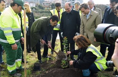 Rui Moreira plantou a primeira árvore no nó do Regado, no Carvalhido.