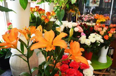 Quatro floristas portuenses consideram que o negócio das flores está mais fraco.