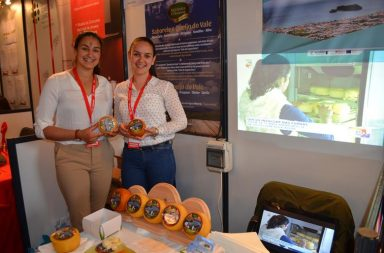 Paula Rego e Ana Rita Ferreira exibem o Queijo do Vale, que já está à venda no continente e nos Açores, de onde são naturais.