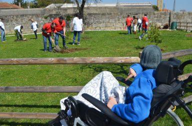 Ao todo foram 12 trabalhadores da Astellas que aceitaram plantar árvores de fruto no Kastelo.