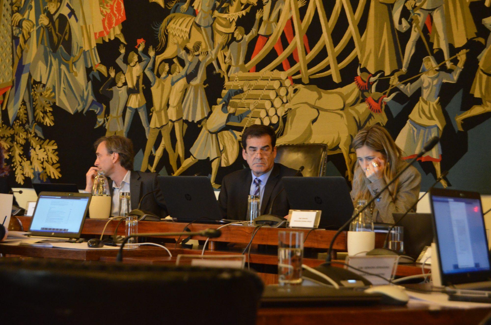 Vereadores do PS, PSD e CDU alegaram a falta de currículo de Luís Osório na área da Cultura.