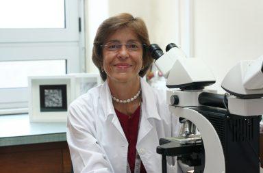 Fátima Carneiro é professora catedrática da FMUP.