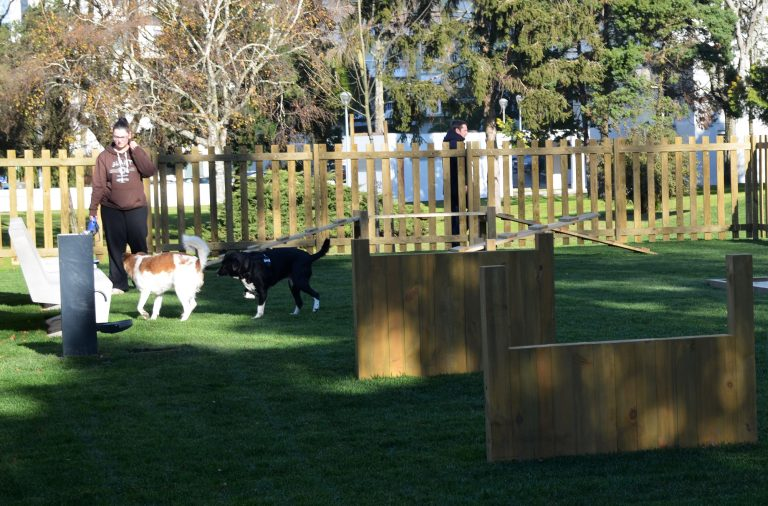 Novo Parque Canino está montado no Jardim Paulo Vallada.