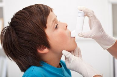 Universidade do Porto (ISPUP) conclui que substâncias presentes no ar podem potenciar asma e obesidade.