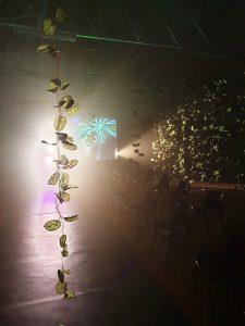 Do espetáculo fizeram também parte projeções de vídeos e de fotografias do bairro.