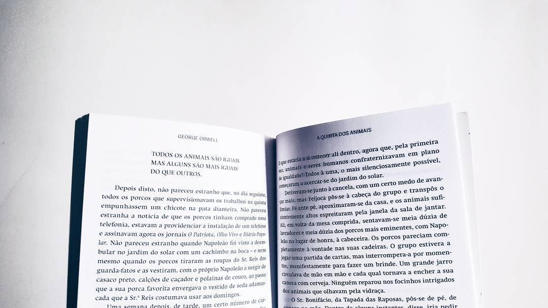 """""""É muito complicado"""". Livrarias independentes pedem apoios para salvar o setor"""