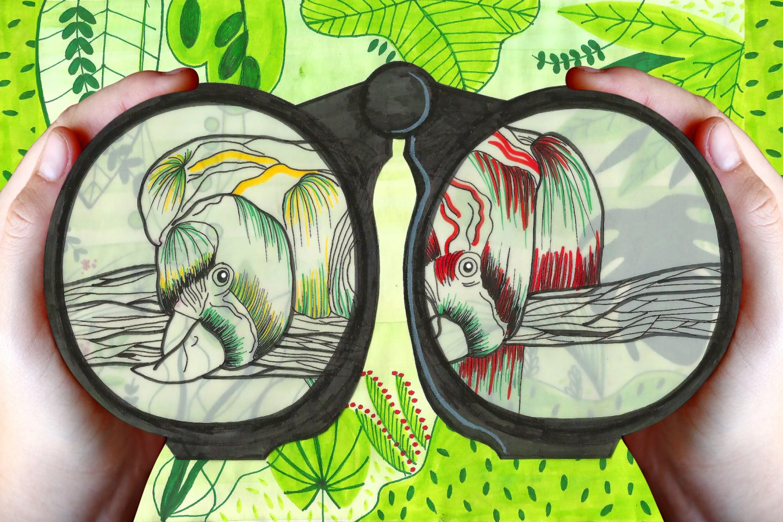 Ornitologia: O bichinho pelos pássaros não tem fim