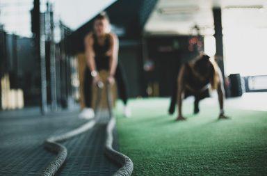 A redução da capacidade dos ginásios é uma das medidas propostas.